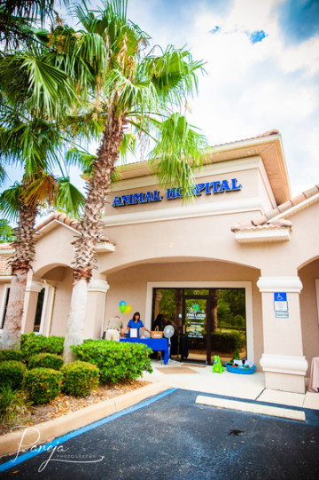 pinelakesanimal in Palm Coast, FL